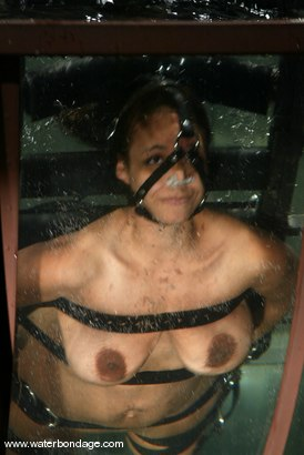 mature extreme sex acts catagories